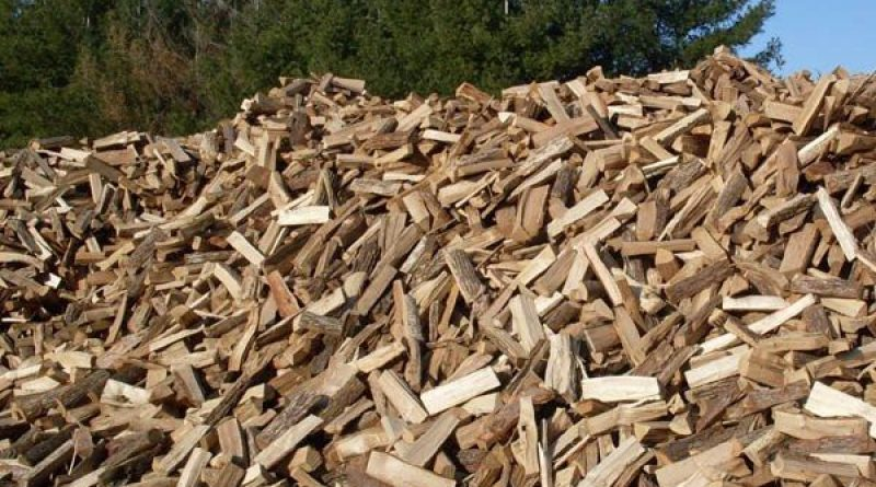 In Picture: Use of firewood has contributed much to climate change