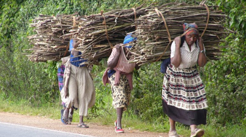 In Picture :Women still lag behind in economic empowerment